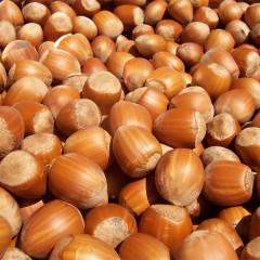 ¿Qué nos aportan los frutos secos?