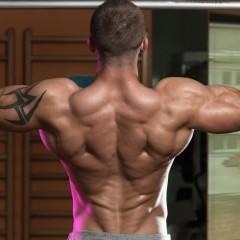 Consigue una espalda en V
