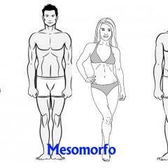 Descubre a que grupo somático perteneces: Endomorfo, Mesomorfo o Ectomorfo