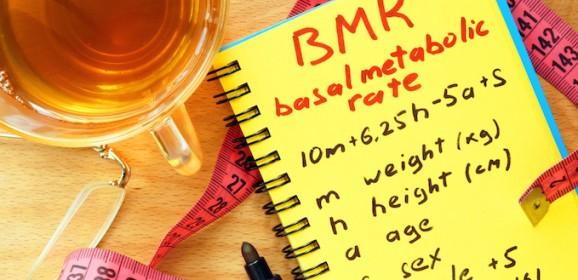 Harris-benedict basal de calculadora metabolica tasa