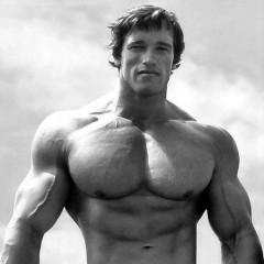 Plan de ataque de Arnold Schwarzenegger contra el punto débil